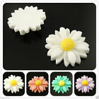 Multi Color Resin Daisy Flower Flatback Cabochons Scrapbooking Craft 22mm