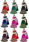 NW Embroidery work Readymade Lehengha Choli sari Bellydance Skirt Top Veil Set E