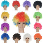 Curly Clown Wig Afro Fancy Dress Disco Party Costume 13 Colours Men Ladies Hair