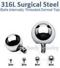 14GA~2mm,3mm,4mm,5mm Ball 316L Surgical Steel Internally Dermal Anchor Top