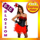 CC50 Faux Leather Feather Burlesque Moulin Rouge Costume Hens Night Corset Skirt
