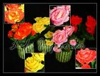 18cm Artificial Silk Rose Flower Dew Plant @ Clay Pot Decoration Red Pink Yellow
