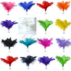 20PCS Ostrich Feathers approx 35-40cm/14-16inch wedding party Xmas Decorations