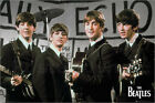 Poster The Beatles - Daily Echo