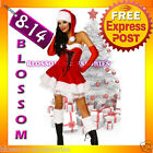 F26 Santa Claus Christmas Helper Fancy Dress Costume Xmas Party Outfit & Hat