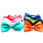 Fashion Cute Dog Pet Cat Puppy Bow Neck Tie Necktie Bowtie Acccessory Collar New