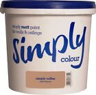 SIMPLY COLOUR 2.5L/5L SILK PAINT FOR INTERIOR WALLS AND CEILINGS