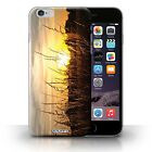 STUFF4 Back Case/Cover/Skin for iPhone 6+/Plus 5.5/Sunset Scenery