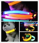 Lovely Cute flashing light led dog collar illuminated safety pet 5 colours S M L