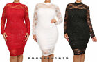 Plus Floral Lace Long Sleeve Sparkling Hourglass Bodycon Midi Dress