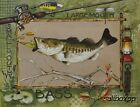 """AP066 Large Small Mouth Bass Phillips 11""""x14"""" framed or unframed print art fishi"""