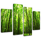 MSC276 Green Lush Spring Forest Canvas Wall Art Multi Panel Split Picture Print