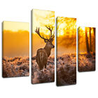 MA217 Sunset Forest Plains Stag Canvas Art Multi Panel Split Picture Print