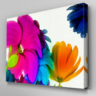 AB052 Rainbow 3D Flowers Canvas Wall Art Ready to Hang Picture Print Large