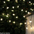 100 LED SOLAR POWERED STAR FAIRY STRING OUTDOOR GARDEN LIGHTS WITH TIMER 10M