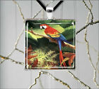 BIRD PARROT ARA JUNGLE RAIN FOREST PENDANTS NECKLACE  -dfc4Z