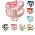 Leather rhinestone Dog harness with diamante band for small dogs breeds xsmall