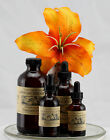 AFRICAN DREAM HERB Silene capensis root LIQUID Herbal Extract Tincture Xhosa