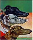 Vintage Greyhound Trio Quilting Fabric Block