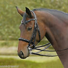 Busse Glamour Patent Leather Double Bridle Comfort Headpiece Choice of Browbands