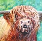 'Colin' Highland cow painting by Julia Pankhurst in various print/canvas sizes