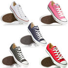 Converse All Star Low Canvas Trainers  Mens, Womens Size