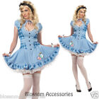 Sweet Alice In Wonderland Storybook Fancy Dress Ladies Adult Costume C748
