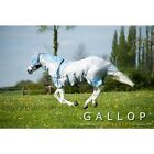 Gallop All in One Fly Midge Rug with Mask Wide Belly Flap ALL Sizes 4'6''-7'0''
