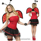 CL786 Womens Lady Bug Costume Ladybird Beetle Dress Halloween Party Outfit Wings