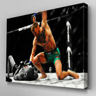 S567 Conor McGregor UFC 194 Aldo KO Pound Canvas Art Framed Poster Prints