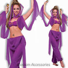 CL812 Desert Princess Arabian Nights Belly Dancer Genie Fancy Dress Up Costume