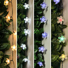 50 OR 100 LED, 5M OR 10M SOLAR OUTDOOR GARDEN PARTY CHERRY BLOSSOM  FAIRY LIGHTS