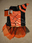 Small Dog Halloween Orange and Black Spellhound Witch Costume New by Begood XS
