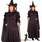 CL810 Classic Witch Wicked Halloween Plus Wizard of OZ Fancy Dress Up Costume