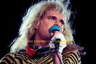 BUY 1,2...OR ALL 8 x 12  inch photo (s) VAN HALEN DAVID LEE ROTH original photos