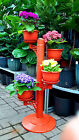Garden Plant Organizer planter IN/OUTDOOR Home Office decor Garden Patio  Gift