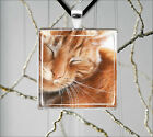 CAT GINGER TABBY FACE NAP TIME PENDANTS NECKLACE  -sel0Z