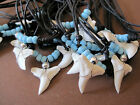 10 REAL SHARK TOOTH TEETH WHITE PENDANT CORD NECKLACE SURFER MEN WOMEN SURF BOY