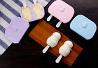 DIY Plastic Ice Cream Pop Popsicle Lolly Juice Yogurt Frozen Freeze Mold Maker