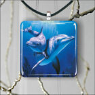 SEA LIFE DOLPHINS FAMILY #2 SQUARE PENDANTS NECKLACE MEDIUM OR LARGE -der2Z