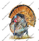 Wild Turkey Bird Sticker Decal Wildlife Outdoors Nature Painting Thanksgiving HD