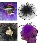 Mesh Feather Fascinators