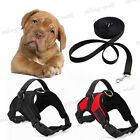 Adjustable Large Dog Harness Vest Walk Out Hand Strap +Pet Leash Tag Heavy Duty