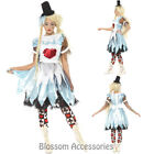 CA11 Alice Blunderland In Wonderland Halloween Zombie Nightmare Dress Up Costume