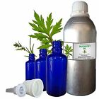 MUGWORT ESSENTIAL OIL 100% Pure Natural Therapeutic Undiluted 5ml to 250ml