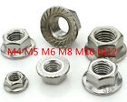 DZ814 M4/M5/M6/M8/M10/M12 Stainless Steel Metric Flange Nuts Fit Bolt Screw10pc♫