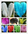 Wholesale 10-100pcs High Quality Natural Ostrich Feathers 6-24 inches / 15-60cm