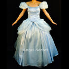 FP259 Cinderella nw park version costume princess blue gown with SILVER slipper