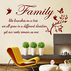Wall Quotes FAMILY LIKE BRANCHES ON A TREE Wall Stickers WALL QUOTE STICKER N59