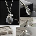 Adorable Silver Real Dandelion Seeds In Glass Wish Bottle Chain Necklace Pendant